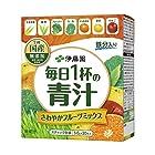 【250円に!】伊藤園 毎日1杯の青汁 粉末タイプ (フルーツミックス) 5.0g×20包が激安特価!