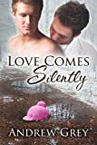 Love Comes Silently (Senses Series Book 1) (English Edition)
