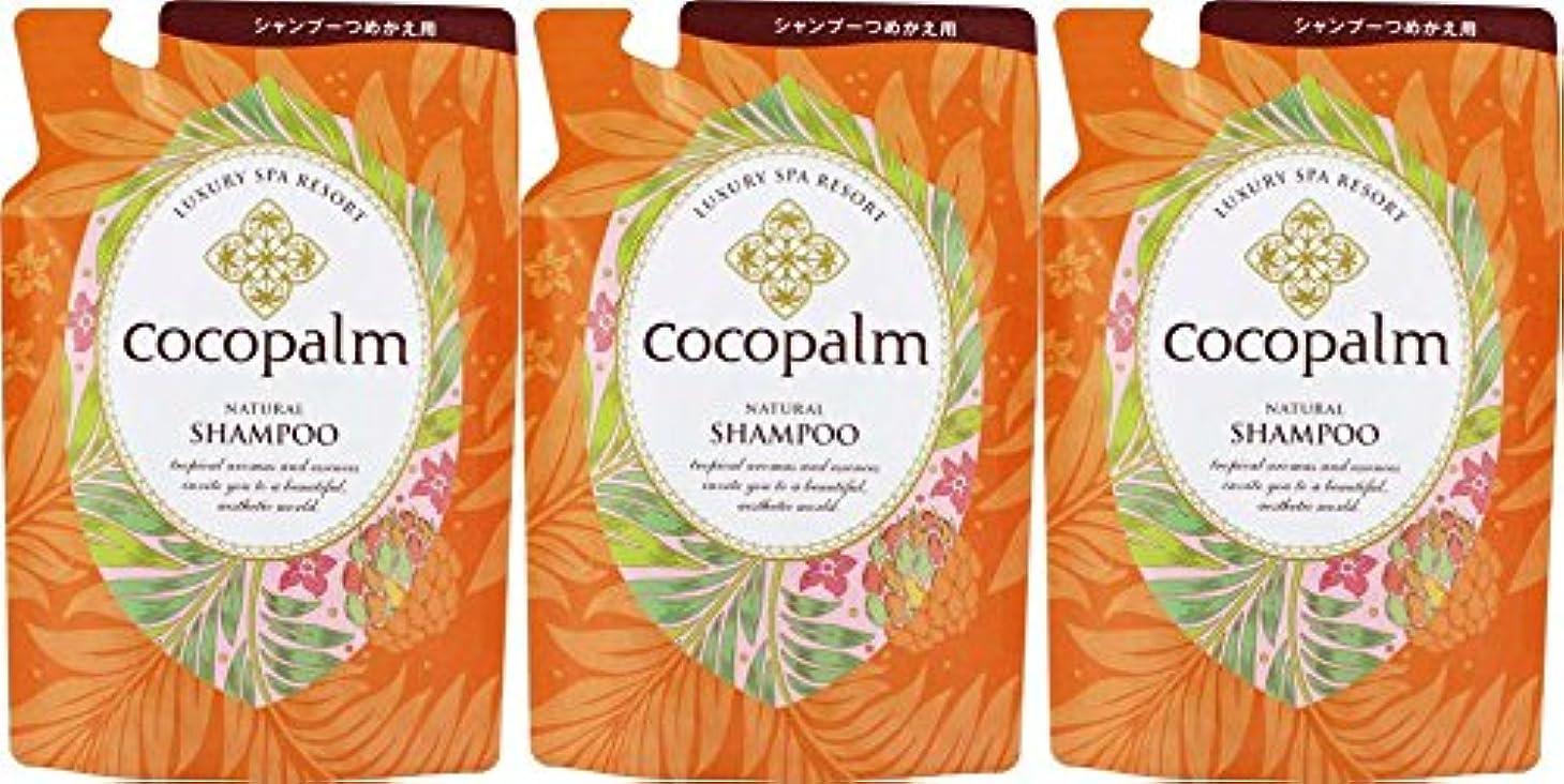 貝殻ほぼ箱【3個セット】ココパーム ナチュラルシャンプー 替 500ml
