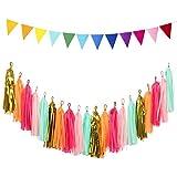 loloajoyタッセルtisuesガーランドキラキラWave Paper Pennant Banner三角形フラグバナー誕生日ウェディングパーティー Tassel and flags LOLOAJOY0000222