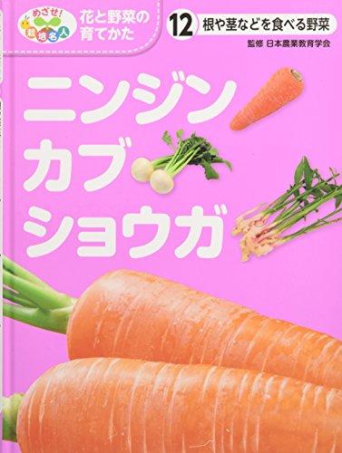 根や茎などを食べる野菜 ニンジン・カブ・ショウガ (めざせ!栽培名人 花と野菜の育てかた)