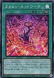 ヌメロン・ネットワーク スーパーレア 遊戯王 コレクションパック2020 cp20-jp026