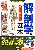 運動・からだ図解 解剖学の基本