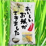 【精米】『☆たんぼだより10k』28 国内産 白米 ブレンド米 10kg