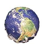 (コズミックツリー) COSMIC TREE コンプリートしたくなる 惑星 クッション 太陽系 地球 月 火星 水星 木星 金星 土星 太陽 丸型 抱き枕 枕 宇宙 コスモ 本物衛生画像 宇宙スペース 雑貨 高品質プリント (30cm, 地球)
