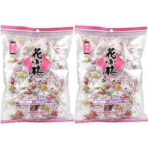 神尾食品工業 ミニ花小梅45p 225g×2個