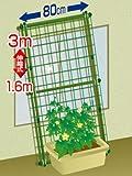 DAIM 緑のカーテン 3m 伸縮ワイド800