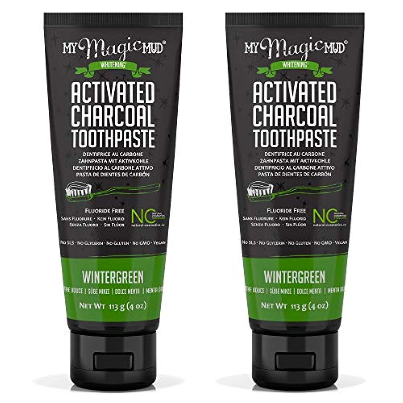 風変わりな貫入楽しいMy Magic Mud Activated Charcoal Toothpaste (Fluoride-Free) - Wintergreen 113g/4oz並行輸入品