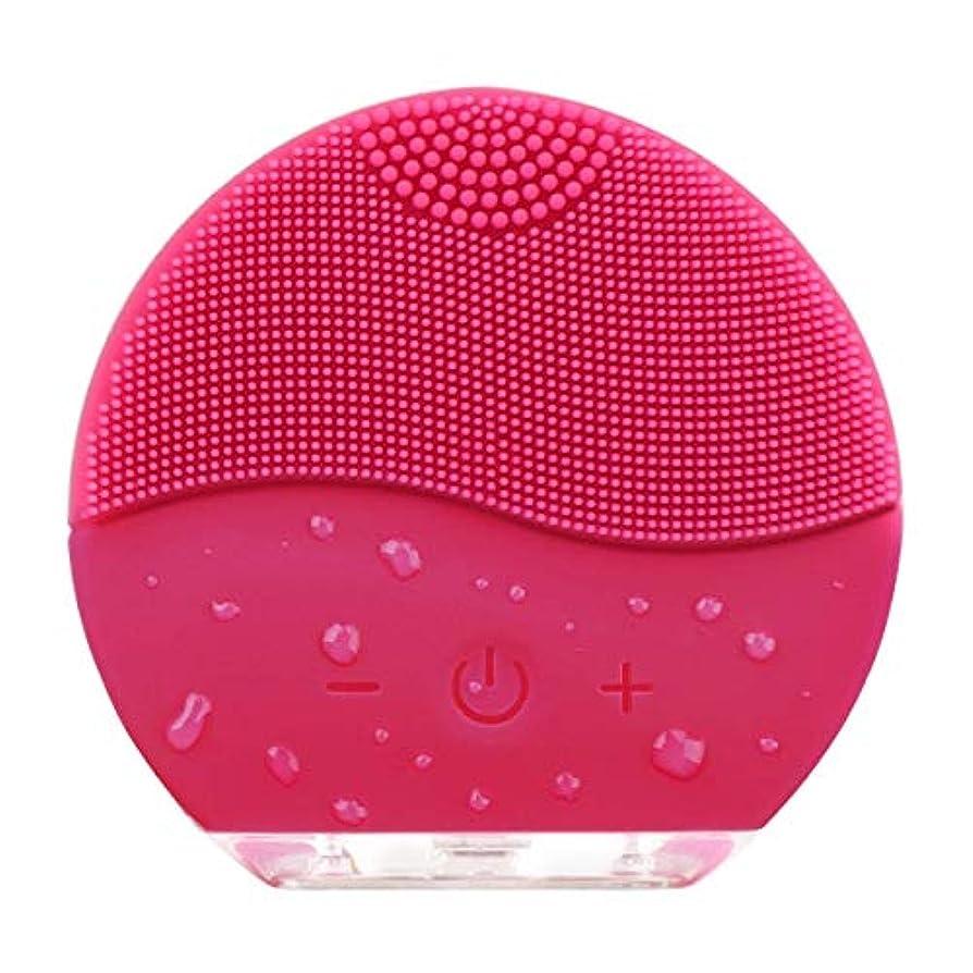 デモンストレーション吸うマイクロフォン電動 洗顔ブラシ HANAMO 音波洗顔 ボディブラシ 洗顔とマッサージ両立 無接点充電式毛穴ケア フェイスマッサージ洗顔器 IPX7防水 シリコン製 二つ使用モート自動的 シャットダウン「改善後の充電口は本体の後ろになっています...