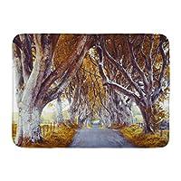 バスマットヘッジグリーンアイルランド壮大な木の路地古い木オレンジダークノーザンバスルームの装飾ラグ