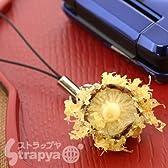StrapyaNext ミニチュアなのに超リアル!天ぷらサンプル携帯ストラップ(しいたけ)
