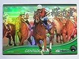 2012オーナーズホース02◆Sレア◆ジェンティルドンナ(桜花賞)OH02-H048≪OWNERS HORSE02≫