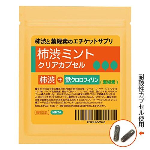 製薬会社の柿渋クリアサプリ50粒入25~50日分:耐酸カプセル使用...