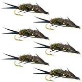 Double Bead Peacock ブラック Stonefly Nymph with ブラック Biot Legs フライ フィッシング Flies - Trout and Bass Wet Fly Pattern - 6 Flies Hook Size 8 [並行輸入品]