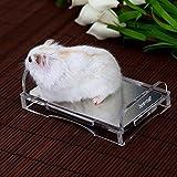 AWHAO 小動物用 ベッド ペット用品 冷却するペット用ベッド 温度を下げる 熱中症 暑さ対策 冷却マット ひんやり 涼しい (猫ちゃん ウサギ モルモット ハムスター )