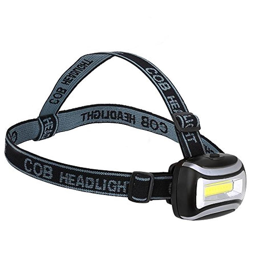 理論的眩惑するメタリックヘッドライト COBヘッドランプ 懐中電灯 防水 耐久性 調整可能 キャンプ/屋外/サイクリング/夜間釣り用