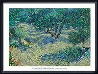 ポスター フィンセント ファン ゴッホ Olive Orchard 1889 額装品 ウッドハイグレードフレーム(ネイビー)