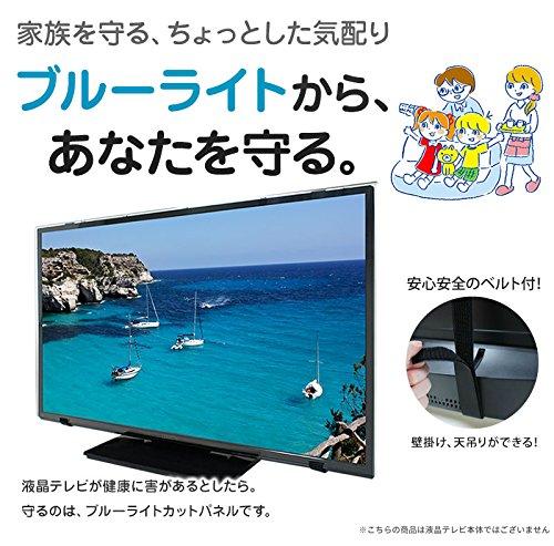 ブルーライトカット液晶テレビ保護パネル60型(60インチ)(60MBL4)