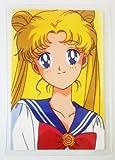 美少女戦士セーラームーン ラミネートカード 月野うさぎ プロフィール