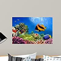 Marine Life Coral Reef Wall Mural by Wallmonkeys Peel and Stick Graphic (24 in W x 16 in H) WM333276 [並行輸入品]