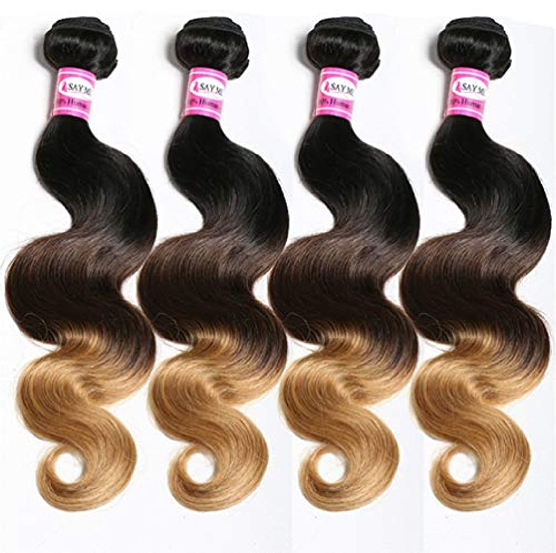 カバー適用するシリーズ女性ブラジルバージンヘアボディウェーブオンブルバンドルボディウェーブ人間の髪の毛バンドル(3バンドル)