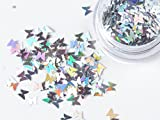 蝶々ホロ 専用ケース入り 1個レジン 封入 レジンクラフト アクセサリーパーツ