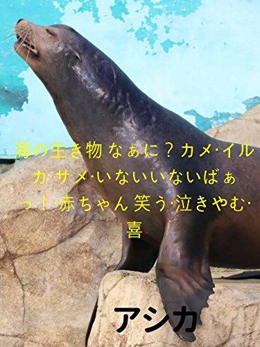 海の生き物 なぁに?カメ・イルカ・サメ・いないいないばぁっ!・赤ちゃん 笑う・泣きやむ・喜