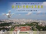 鳥が見た沖縄の世界遺産 ~ マルチコプター による空撮写真集 ~ (誰も見たことがない文化遺産シリーズ)