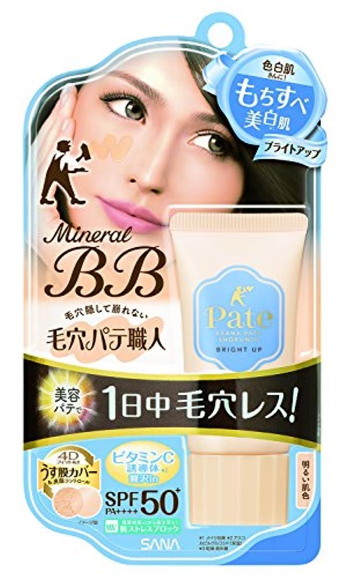 暗くするステンレス副毛穴パテ職人 ミネラルBBクリーム ブライトアップ 明るい肌色 30g