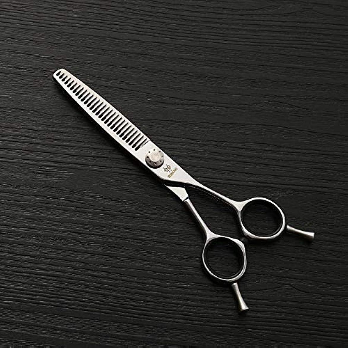 職業ギャング開発6インチの美容院の専門のステンレス鋼の毛の切断用具はさみ、細い歯の切断の魚骨はさみ モデリングツール (色 : Silver)