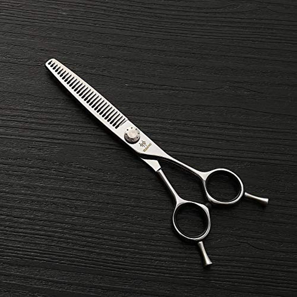 空洞遅らせるいつHairdressing 6インチの美容院の専門のステンレス鋼の毛の切断用具、薄い歯の切断の魚骨はさみの毛の切断はさみのステンレス製の理髪師のはさみ (色 : Silver)
