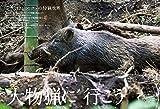 狩猟生活 2018 VOL.4 (CHIKYU-MARU MOOK 自然暮らしの本) 画像