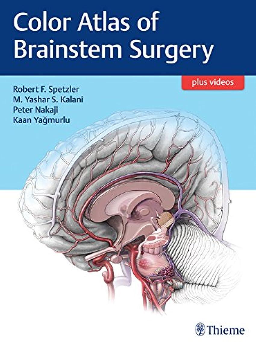 補助壮大な義務的Color Atlas of Brainstem Surgery (English Edition)