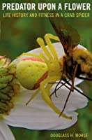 Predator upon a Flower: Life History and Fitness in a Crab Spider