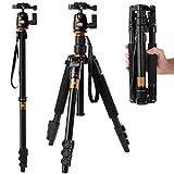 [Rangers]デジタルカメラ 一眼レフカメラ Canon Nikon Petax Sonyなど用  ポータブルなマグネシウム アルミ合金  4段 三脚・一脚可変式&ボールヘッド 雲台 ゴールド  RA010