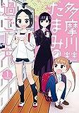 多摩川たまみの過ごし方(1) (バンブーコミックス)