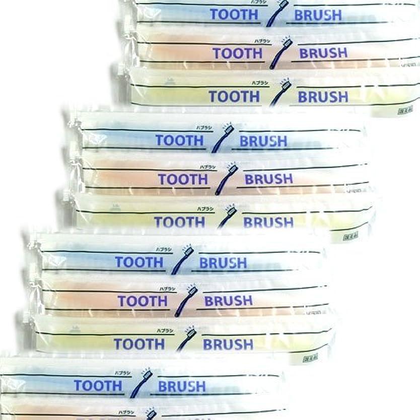 思いつくファンシーおめでとうホテルアメニティ 業務用 使い捨て(インスタント) 粉付き歯ブラシ × 500個セット