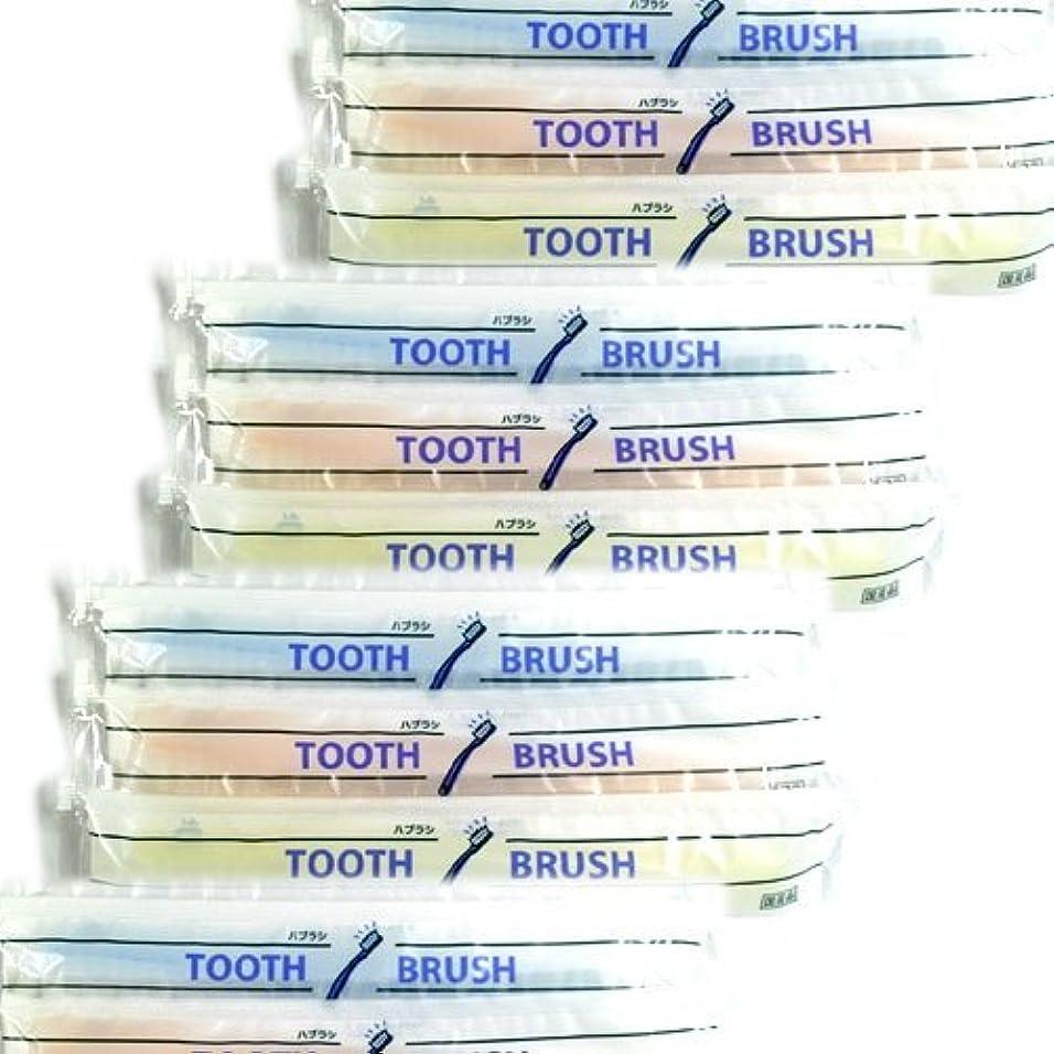 気をつけてテラス重要性ホテルアメニティ 業務用 使い捨て(インスタント) 粉付き歯ブラシ × 1000個セット