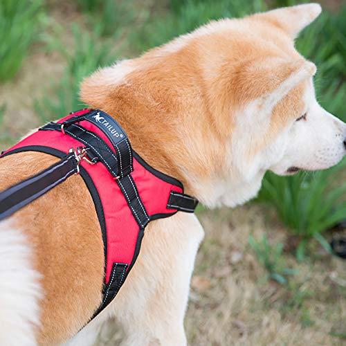 TAILUP『オックスフォード製犬用ハーネス』