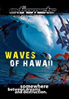 Extremists: Waves of Hawa2 [DVD] [Import]