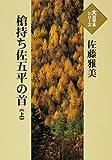 槍持ち佐五平の首 (上) (大活字本シリーズ)