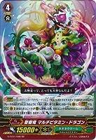 【シングルカード】GFC01)聖樹竜 マルチビタミン・ドラゴン/ネオネク/RR G-FC01/048