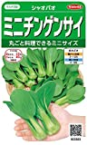 サカタのタネ 実咲野菜3303 ミニチンゲンサイ シャオパオ 00923303