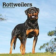 Rottweilers 2020 Calendar