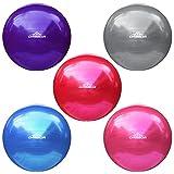 DABADA(ダバダ) バランスボール エクササイズボール ヨガボール 直径65cm 全5色 フットポンプ付き