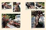 自分の力で肉を獲る  10歳から学ぶ狩猟の世界 画像