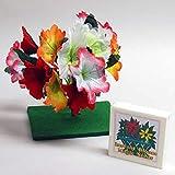 ◆手品?マジック◆ジャックと豆の花◆V5111