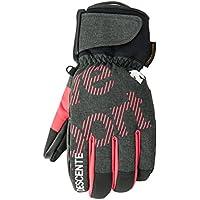 DESCENTE(デサント)ムーブスポーツ 大人用 メンズ スキーグローブ ヒートナビ 手袋 DGL-7011