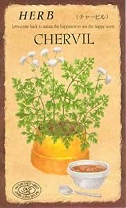 【種子】チャービル [0814]