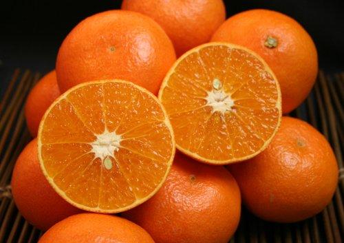 愛媛産 あまくさオレンジ コクある甘さに果汁もたっぷり!5kg(約25〜28個)